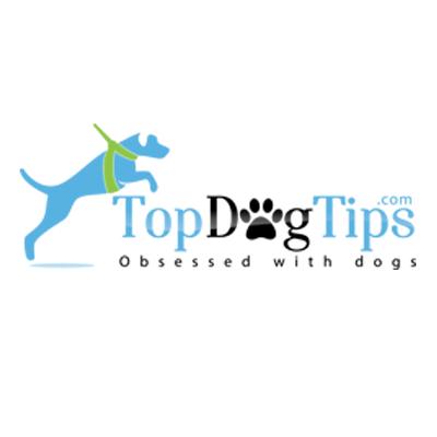 Top Dog Tips